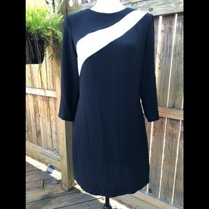 NWOT Zara Long Sleeve Dress